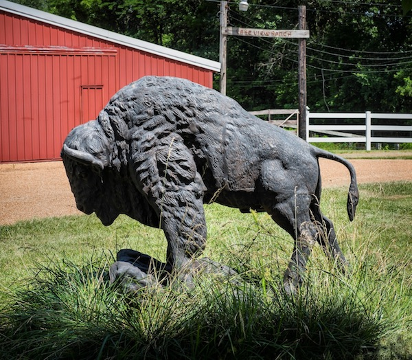 This buffalo statue outside the Kueker homestead in Waterloo will soon have a new home on the Monroe County Courthouse lawn. Inset photo is of the late Edd Kueker.  (Alan Dooley photo)