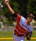 FEAT-PITCHER-WHS-